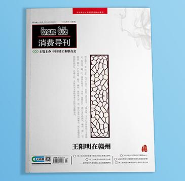 版面设计-消费导刊(2019年-)版面设计展示